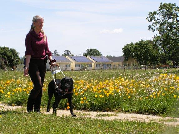 Denise Walking Guide Dog